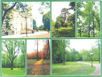 Przyszowice Kompleks  pałacowo-parkowy